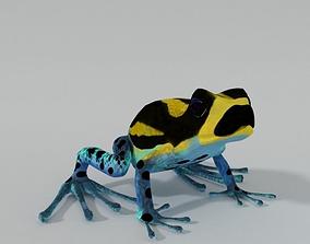 Amazonian Frog 3D model