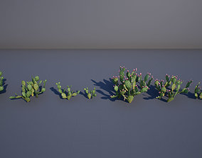 3D asset Opuntia cactus