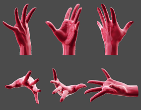 3D print model Detailed Female Hand-Fingers Stretched 2