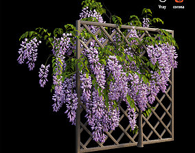 3D Wisterial tree 02