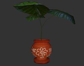 3D model Plant in a pot