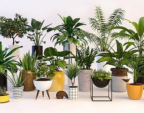 nature Plants 3D model