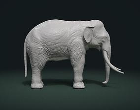 3D printable model High poly elephant