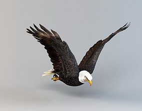3D asset Eagle Flapping Animation