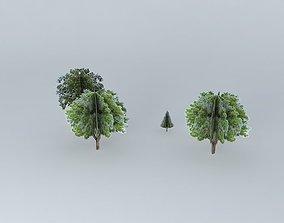 3D model Trees on Causeway