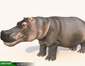 animated game-ready Lowpoly Hippopotamus Animated 3D model