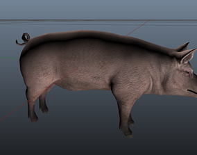 rigged game-ready 3d Pig Model
