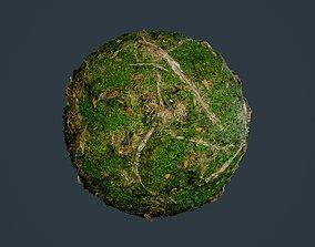 3D model Forest Ground Seamless PBR Texture 14