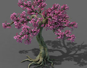 3D model Forest - Peach Blossom Tree 04