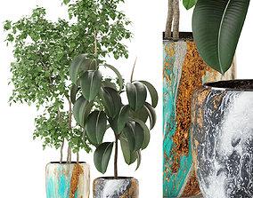 3D Plants collection 299