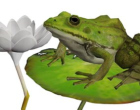 Low poly Green frog 3D asset