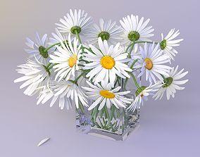 3D model bouquet of daisies
