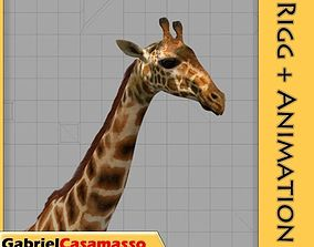 Giraffe 3D animated