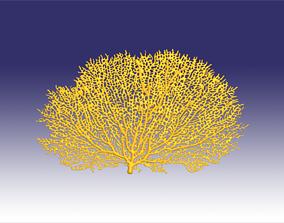 3D printable model Red gorgonia coral
