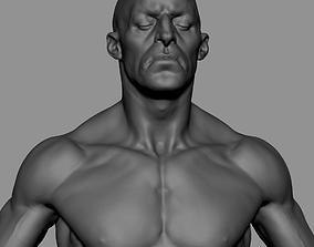 Male Anatomy Printable