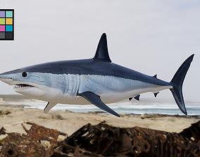 3D Shark Mako model with materials