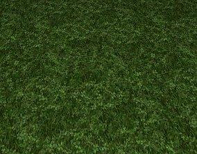 ground grass tile 41 3D