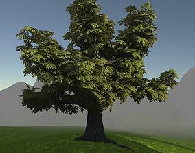 3D asset Game ready model old oak