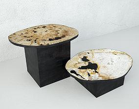 Petrified Wood Slice Coffee Tables 6 3D