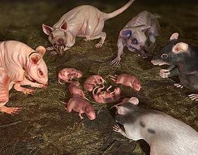 3D model Rats Complete Pack