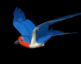 3D model Rigged and animated cartoon swallow