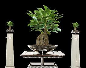 flower stand ART EDGE 3D model
