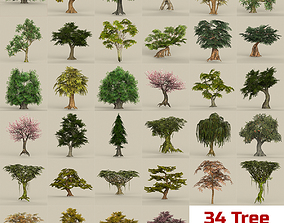 Game Ready Biggest Tree Collection 3D asset