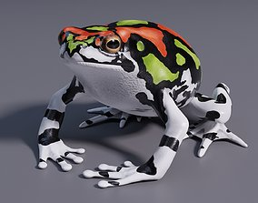Malagasy Rainbow Frog - Animated 3D asset