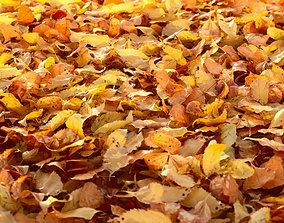 Autumn Leaves set 3D model