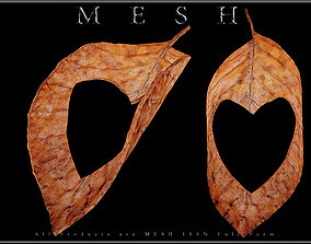 3D asset Heart Dry Leaf - Curved
