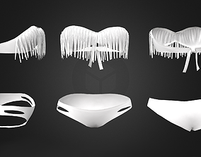 Fringe Bandeau Top and Bikini Swimwear 3D asset