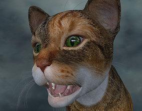 CATS-018 Rigged Cat 3D model