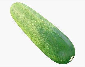 Cucumber Vegetable 3D model