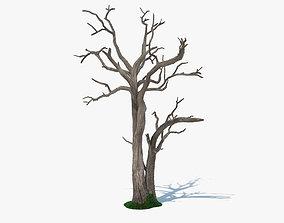 botanical 3D model Dead Tree
