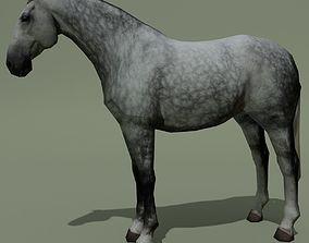 LowPoly Horse B Dapple grey 3D asset