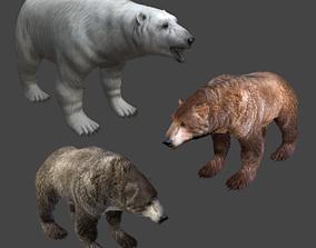3D 3 BEARS Pack - polar brown black - game ready