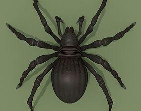 3D model Fantasy Spider cartoon