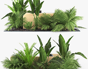 3D flowerbed palm