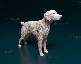 3D printable model Brittany