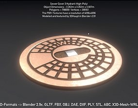 3D Sewer Cover 3 Hydrant High-Poly