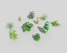3D model 10 low poly ground plants pack