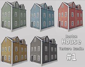 3D model Boston House Bundle 01