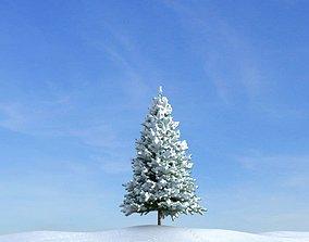 3D model Fir Tree With Snow