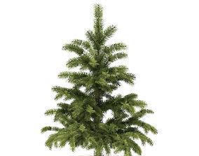 Pine Tree 1point4m 3D