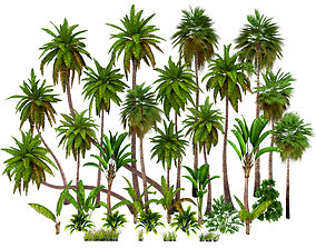 Palms low poly 3D asset