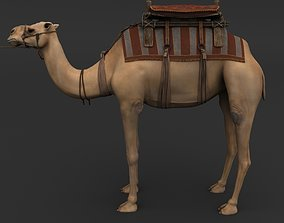 Camel dune 3D rigged