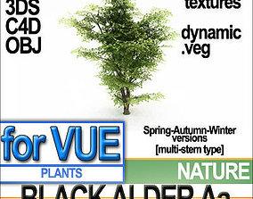 Black Alder Tree Aa vue veg dynamic 3D model