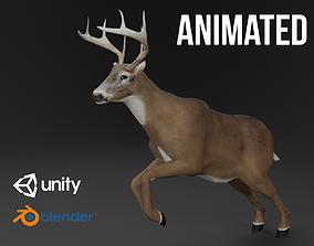 White-Tailed Deer 3D model