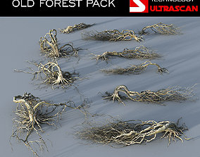 OLD FOREST PACK 10 3D