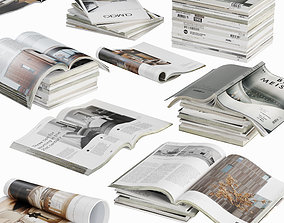 3D model Opened magazines stack set